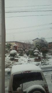 雪のペンキやさん